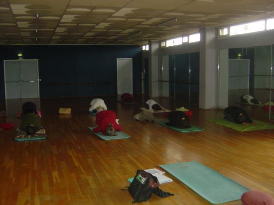 Salle de yoga (Belle Isle) : posture du Foetus