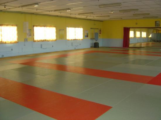 Salle de yoga -Dojo ORSENNES