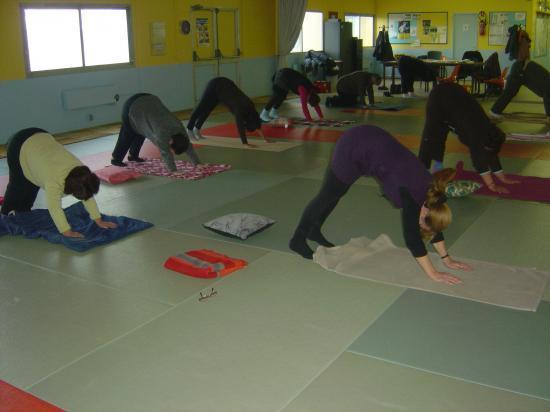 Salle de yoga à ORSENNES : posture chien tête en bas ou le marsouin